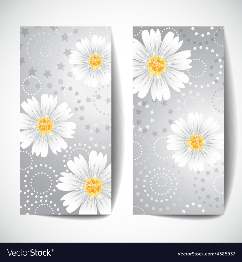 Two banners with daisy flowers on white background