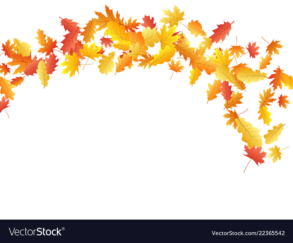 Flying oak and maple leaf abstract background