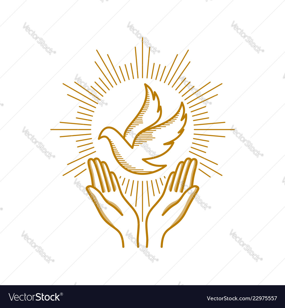 Praying hands and dove a symbol holy spirit Vector Image