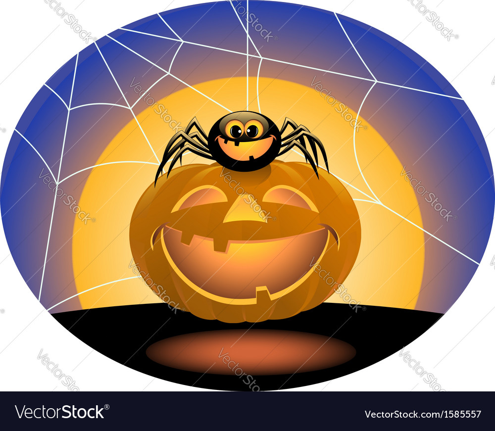 Spider and pumpkin vector image