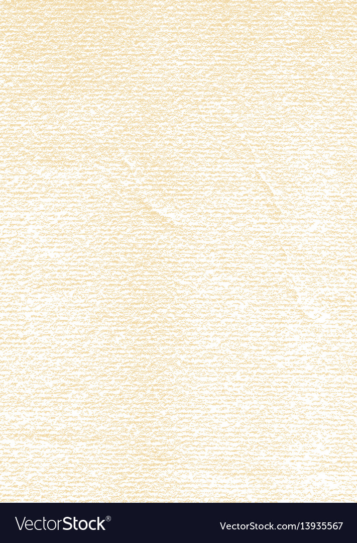 Paper texture vertical size vector image