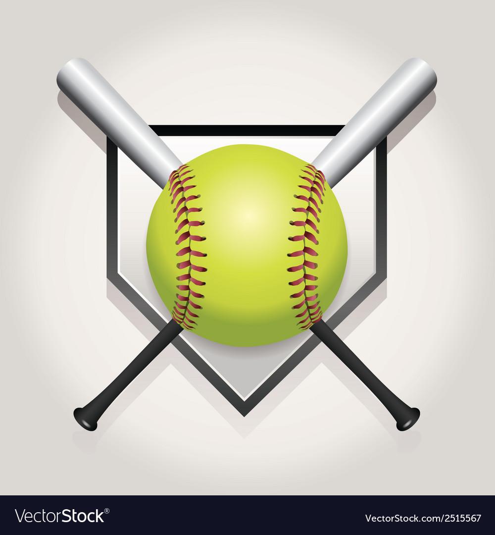 Softball bat plate