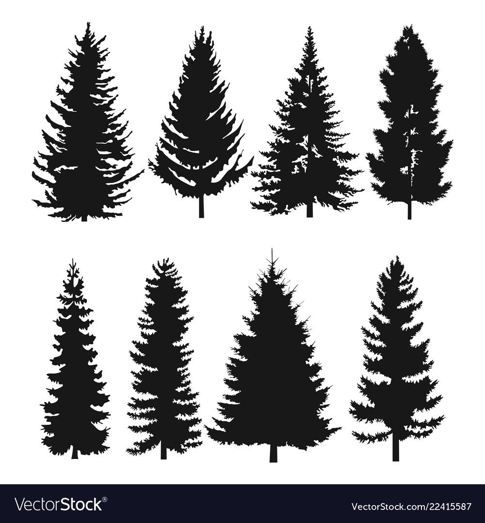 Pine tree flat icon