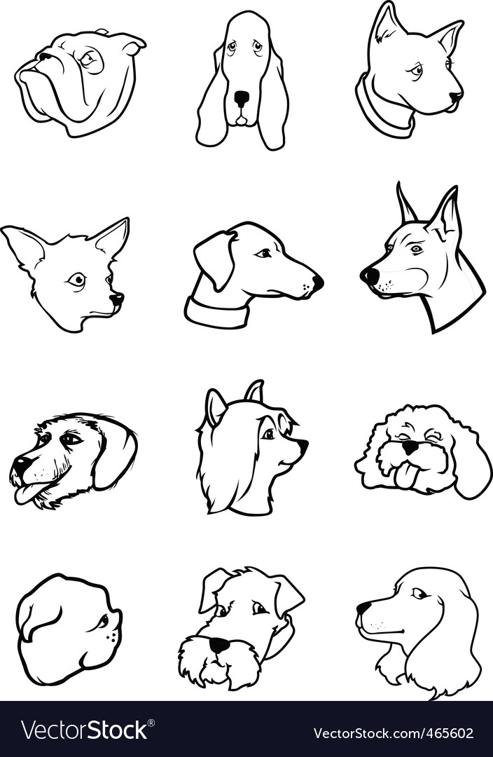 Cartoon dog faces vector image