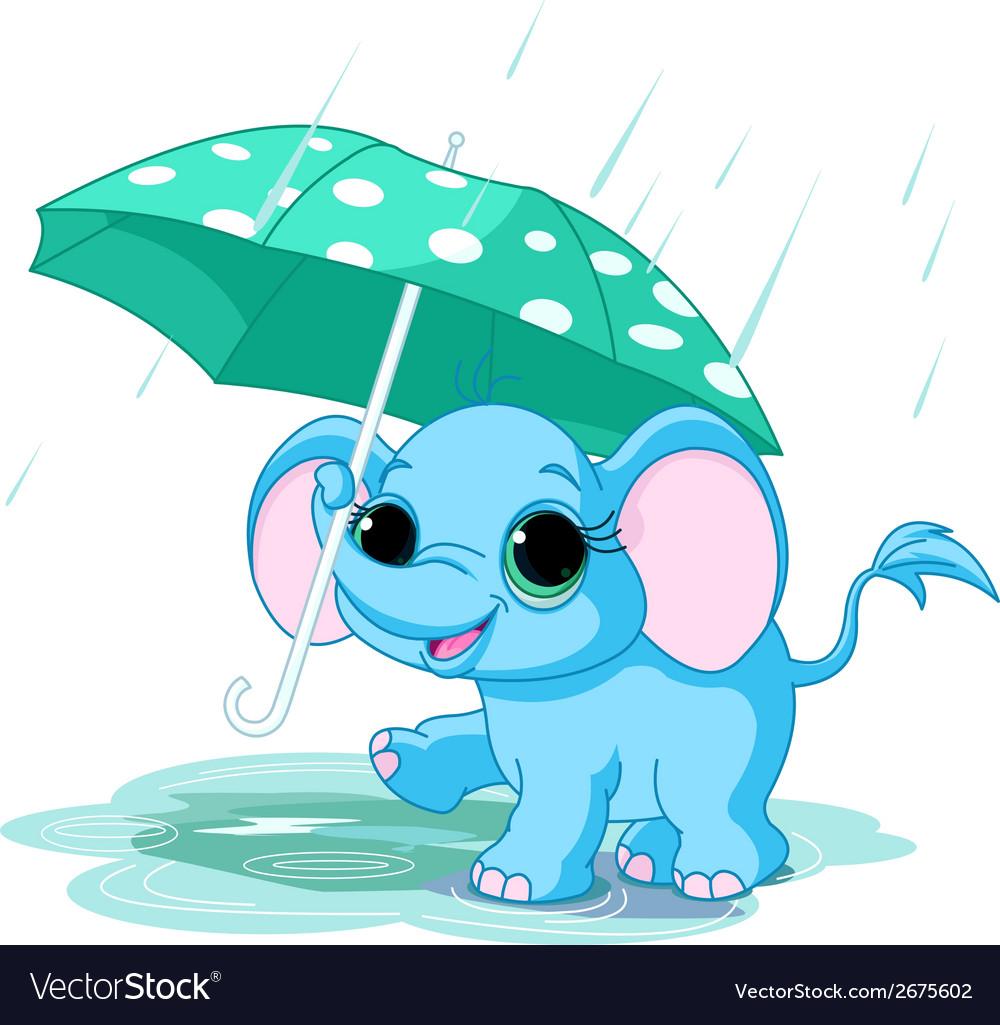 Cute baby elephant under umbrella