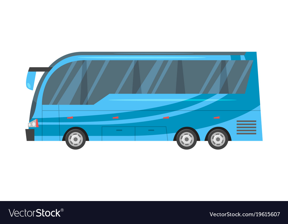 City transport - blue bus vector image