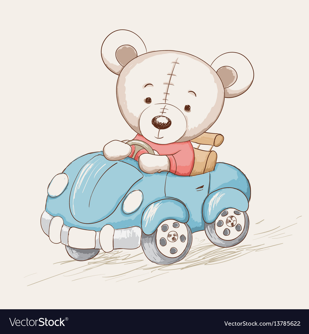 Cute funny bear drive a car