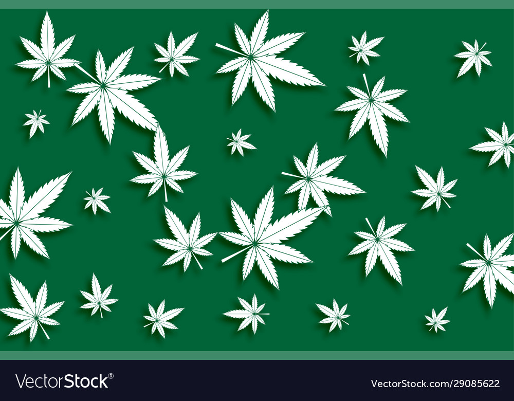 Green cannabis marijuana leaves pattern
