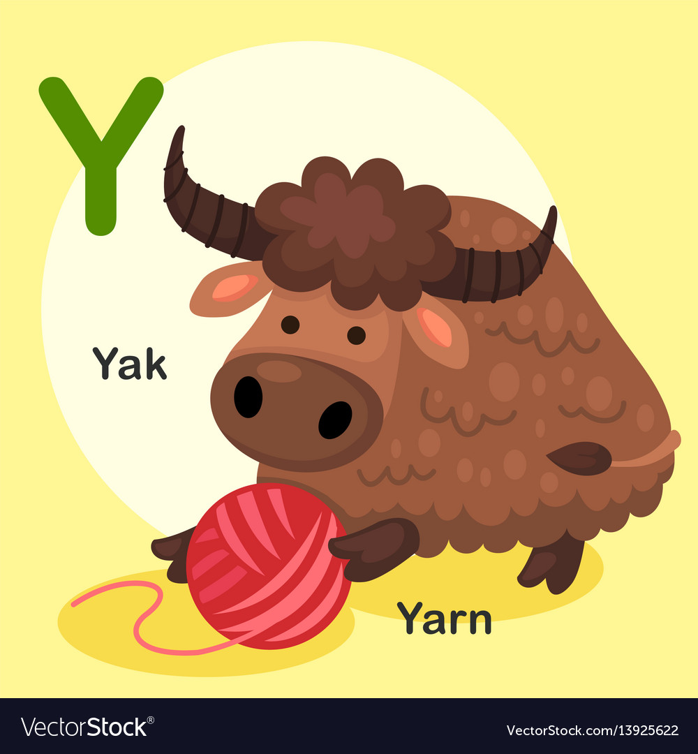 Isolated animal alphabet letter y-yak yarn