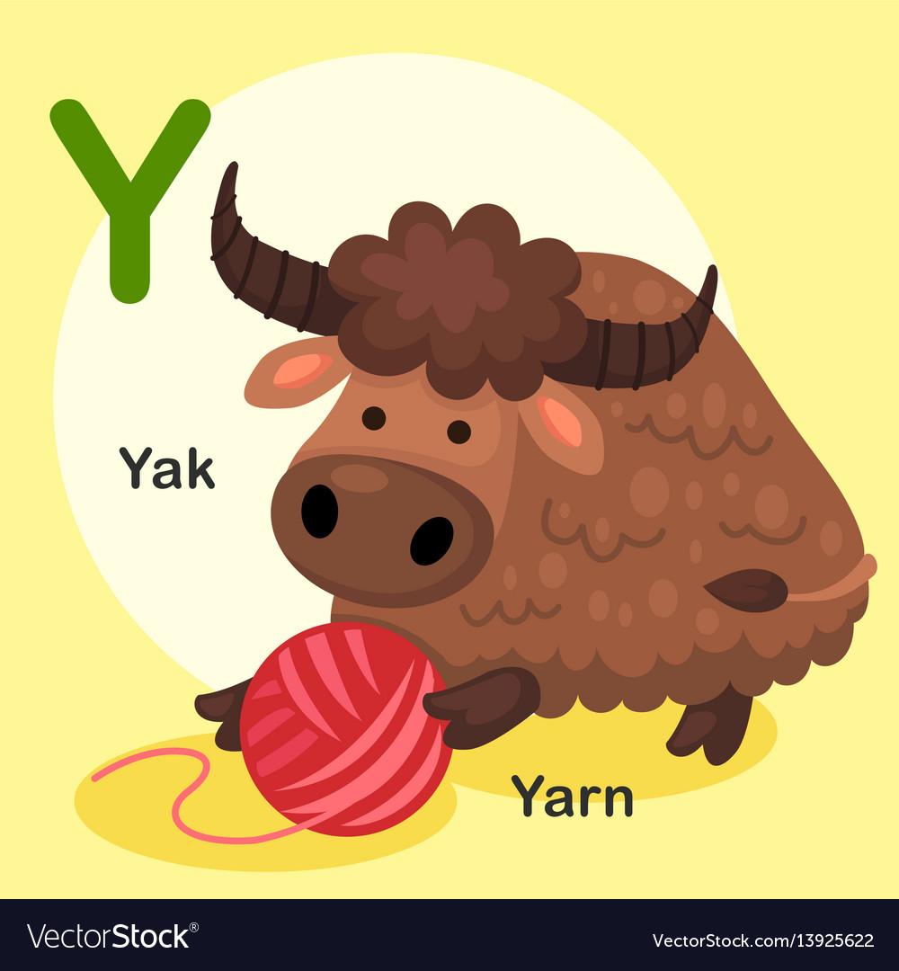 Isolated animal alphabet letter y-yak yarn vector image