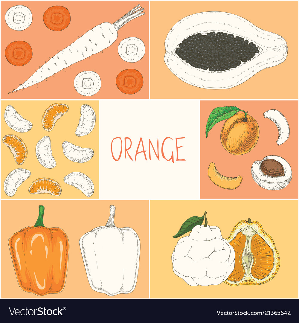 Coloring Book Page Orange Fruits And Vegetables