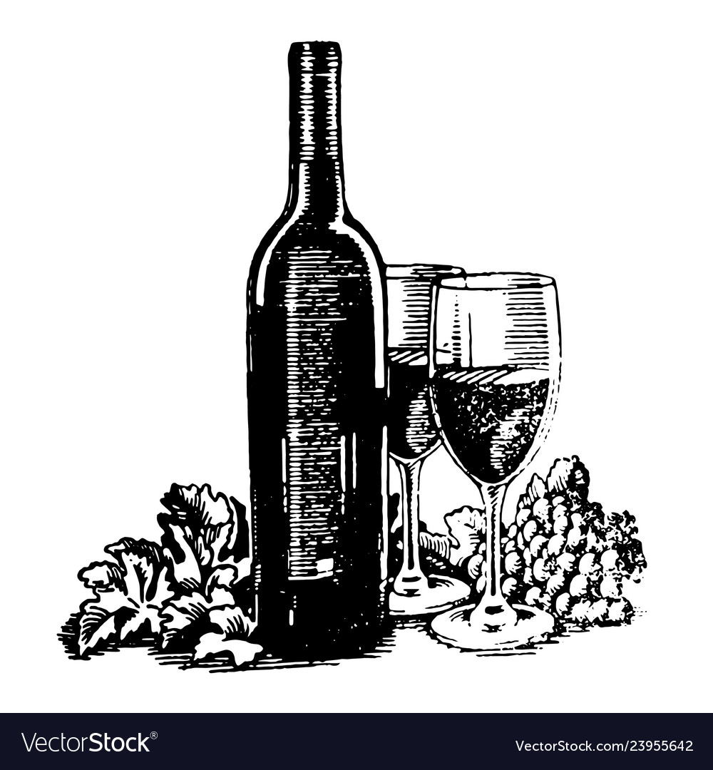 Hand drawn sketch of wine bottle with glass