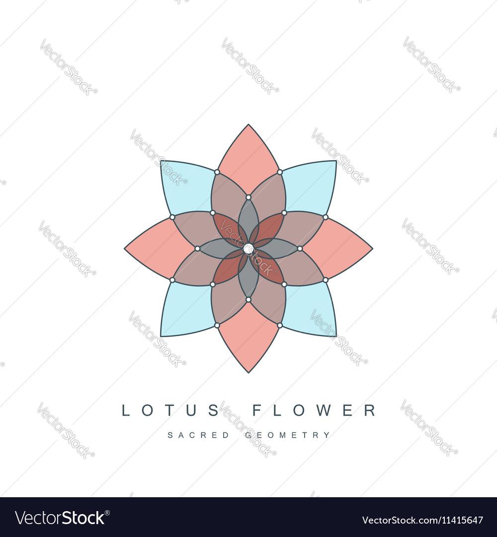 Lotus flower sacred geometry vector image