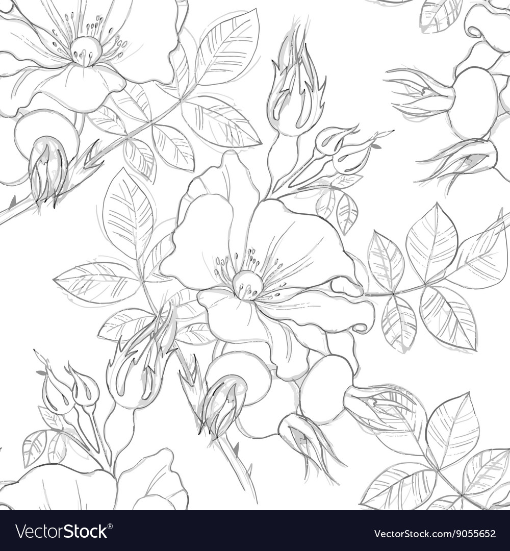 Seamless pattern of wild roses vector image