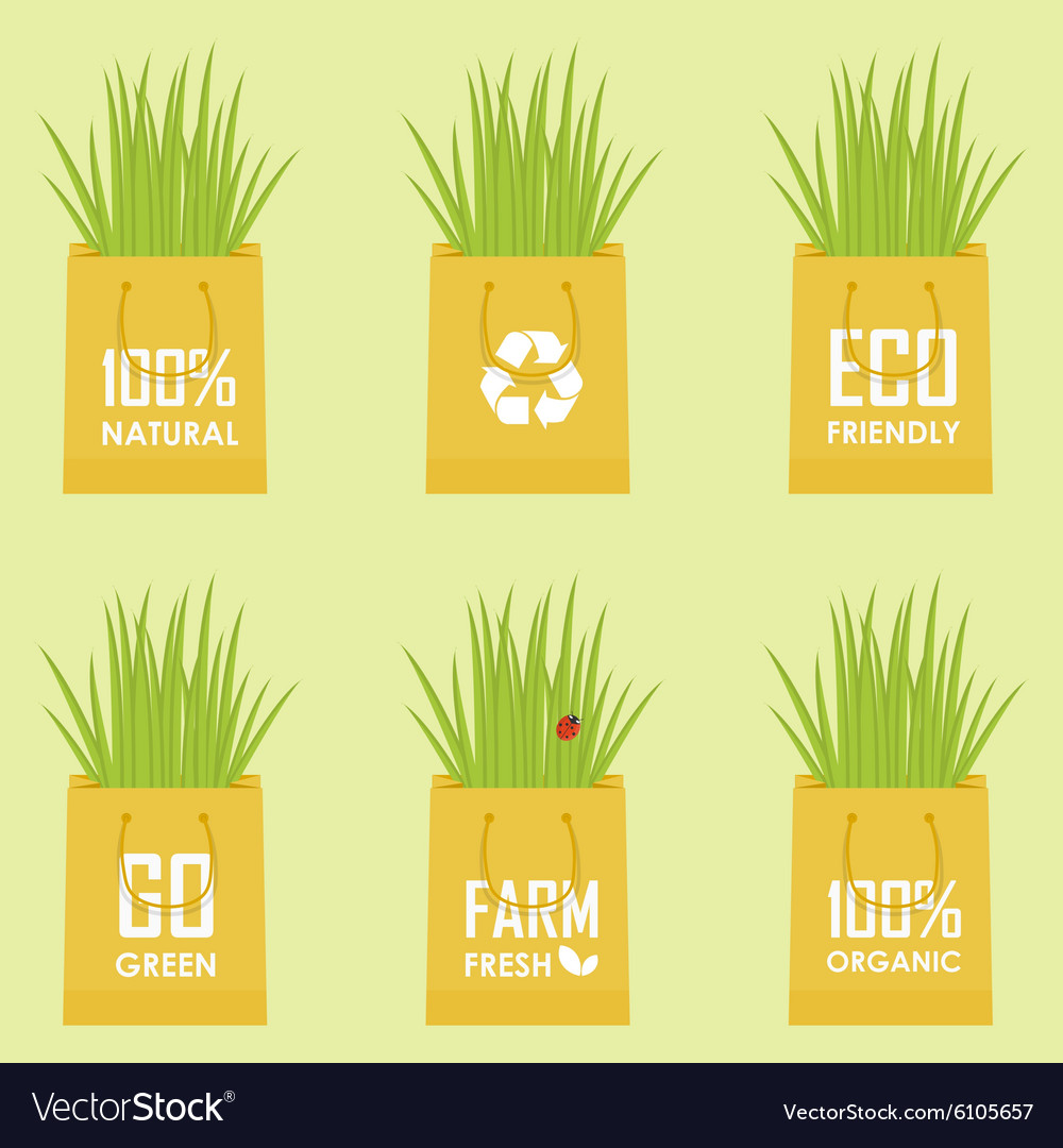 Eco recycle bag