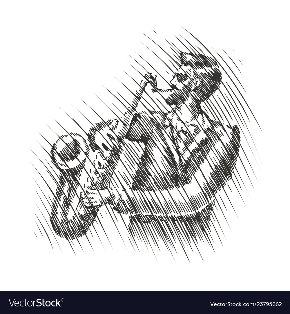 Musician plays the saxophone live music musical
