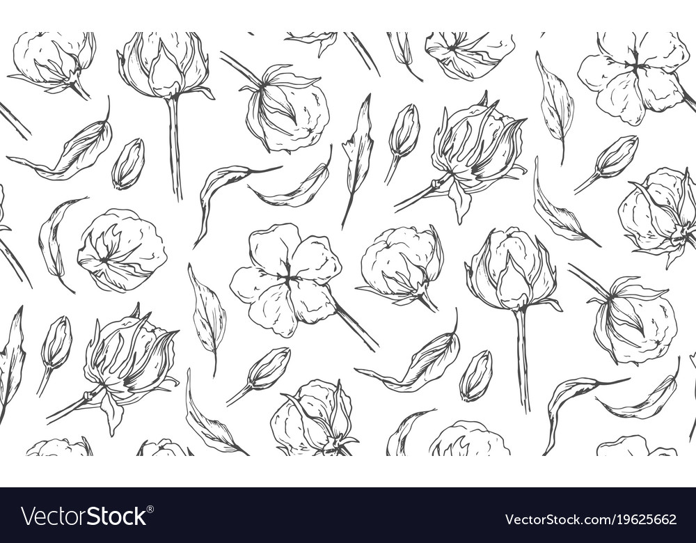 seamless pattern with cotton ball flowers leaves vector image