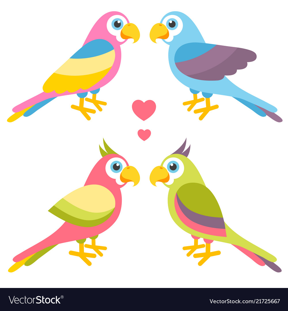 Couples of cartoon colorful parrots in love