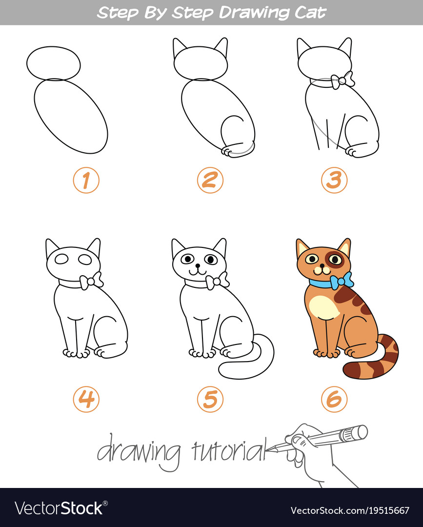 Step By Step Drawing Cat Royalty Free Vector Image