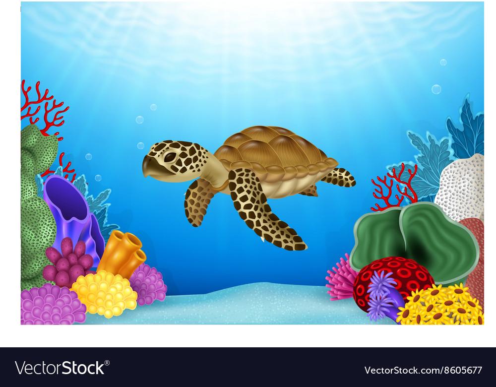Cartoon of Turtle with beautiful underwater vector image