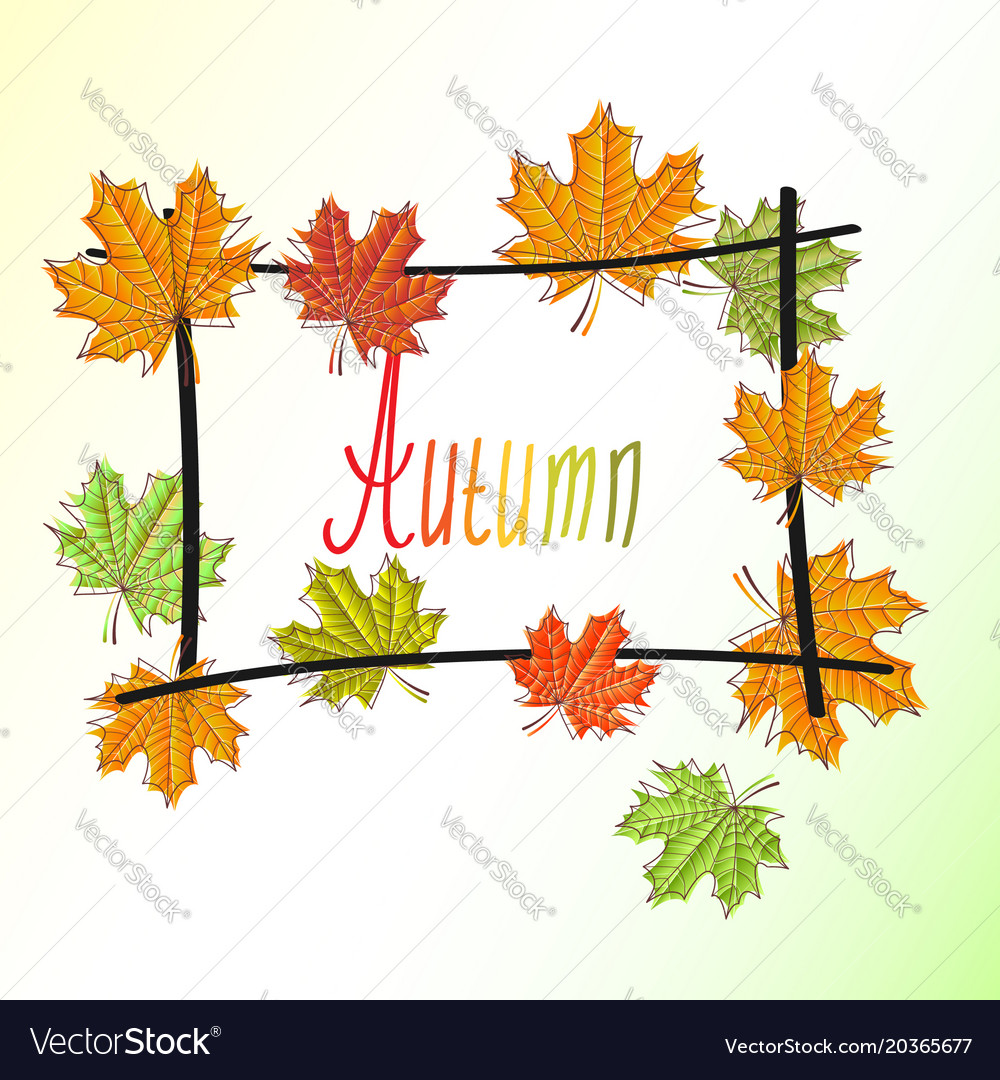 Frame wicker sketch with maple leaves autumn Vector Image