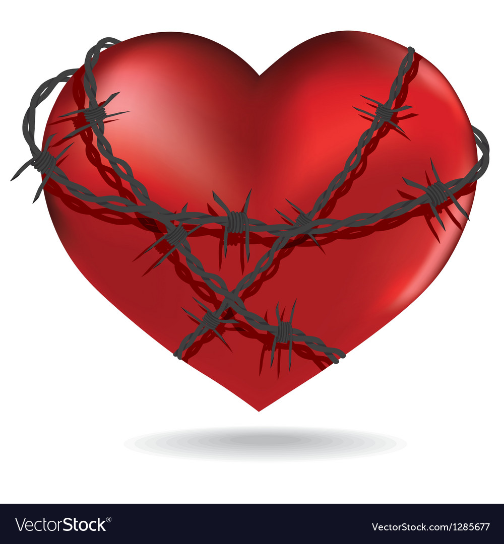 Red heart with barbed metal wire vector image