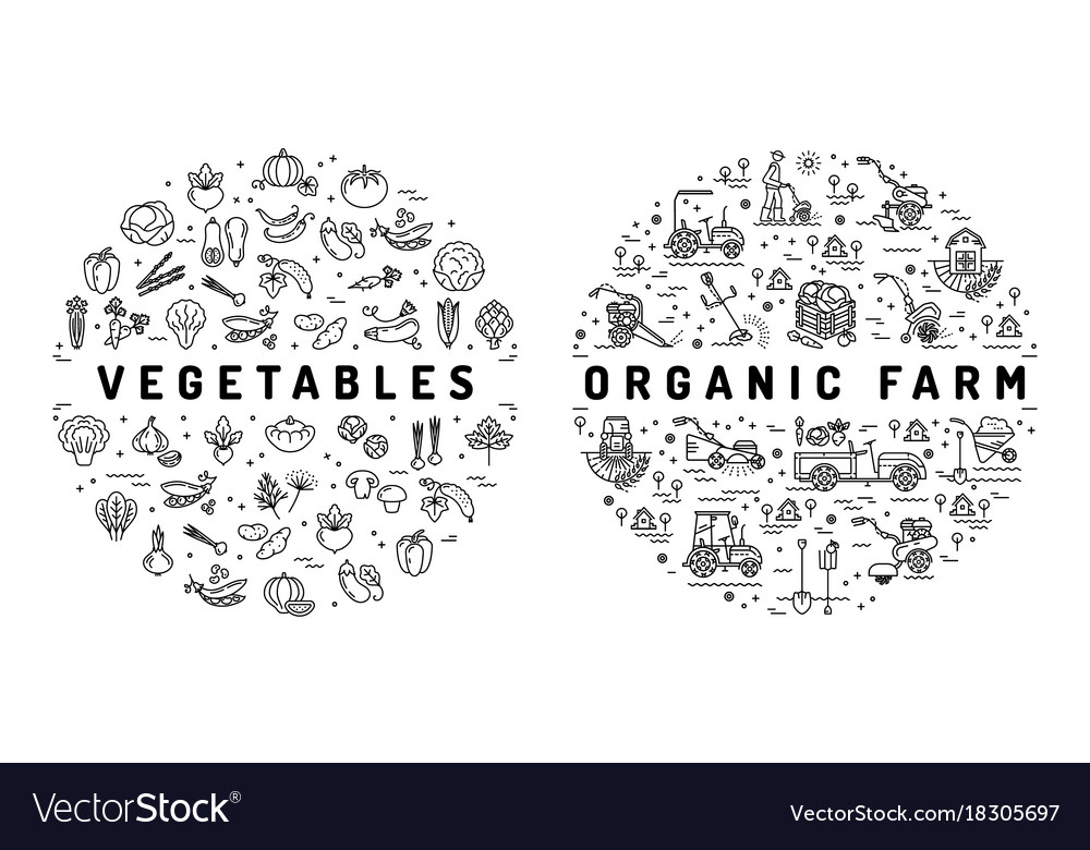 Agriculture farming and vegetable flat vector image