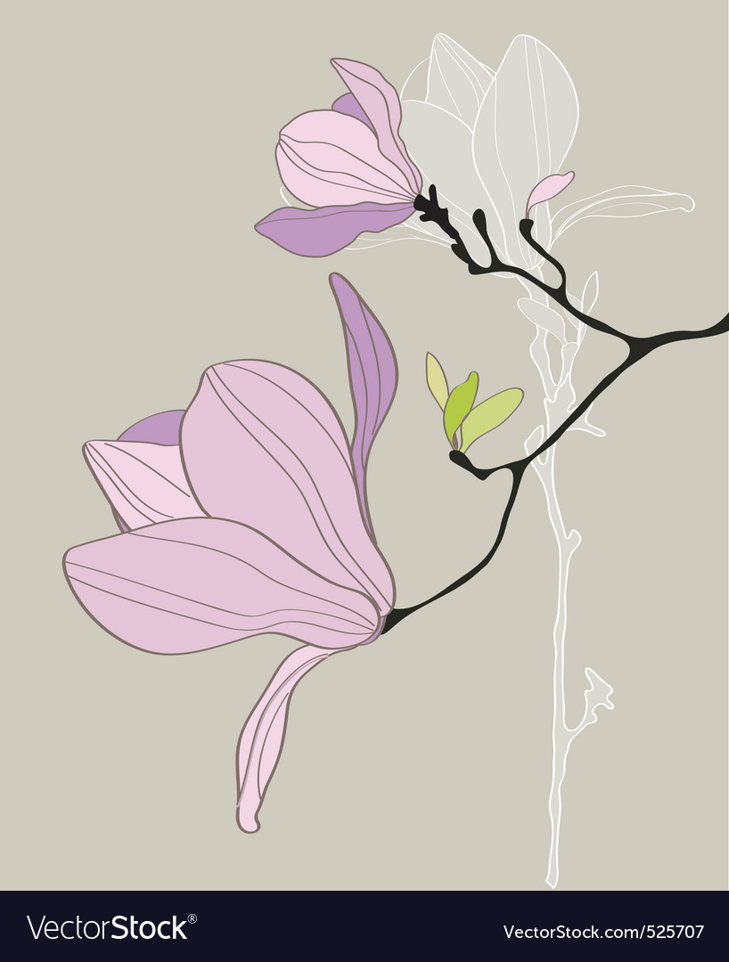 Card with stylized magnolia vector image