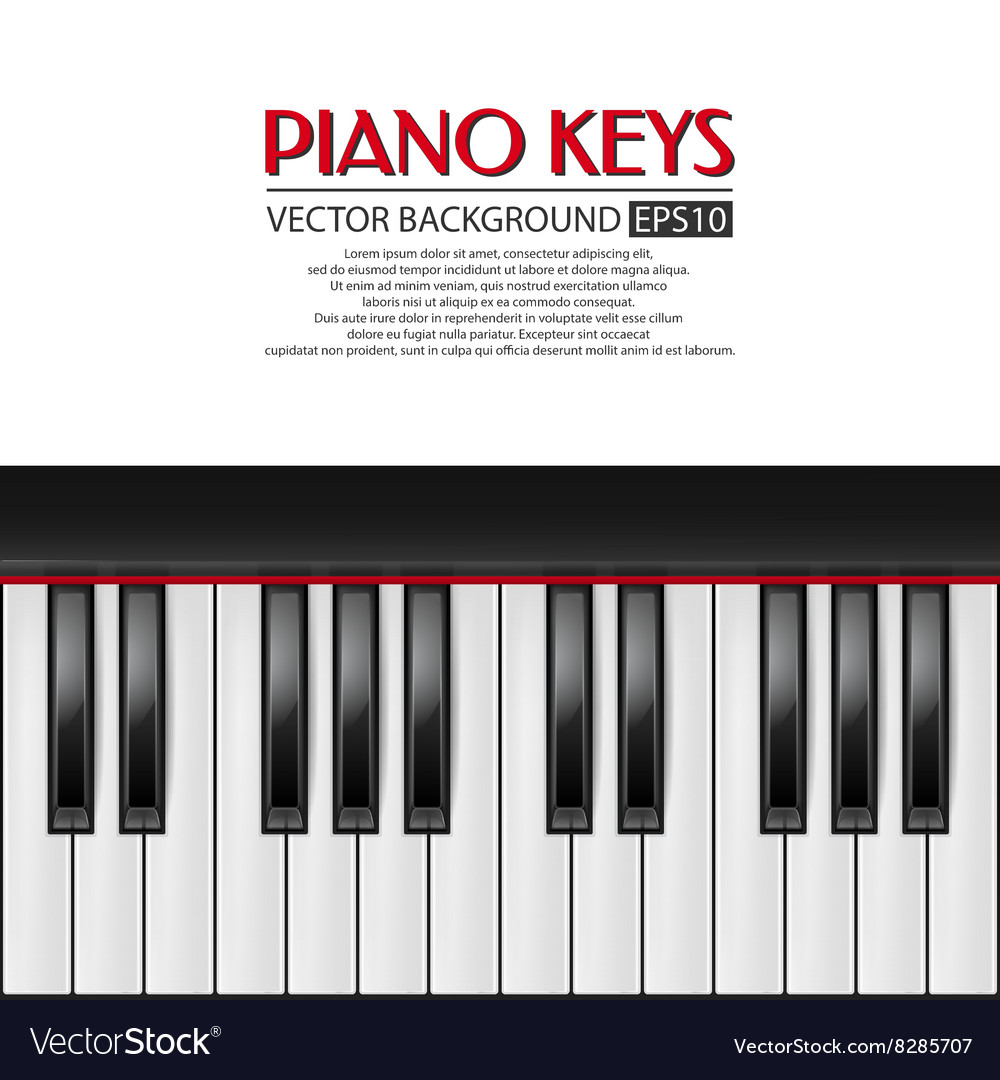 Piano keys background vector image