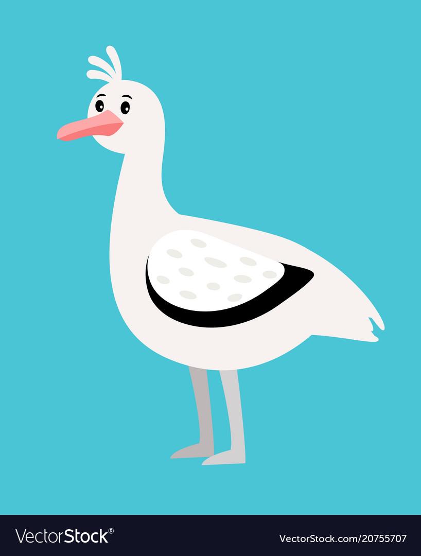 Seagull white bird icon