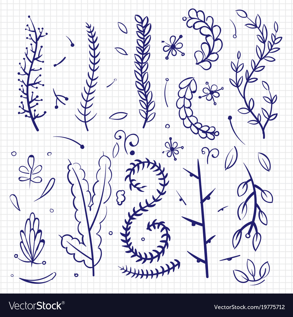 Hand drawn doodle branches and decorative elements