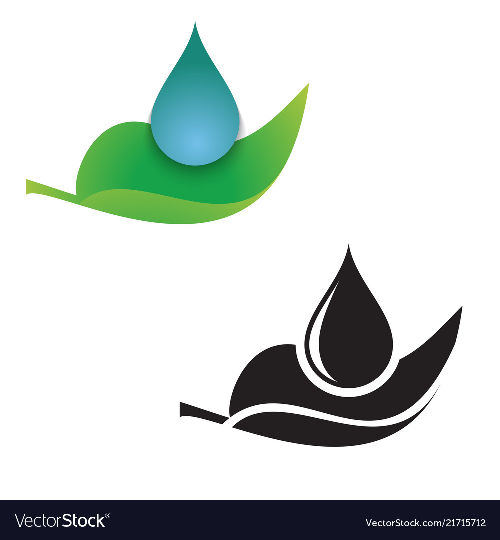 Leaf and droplet icon