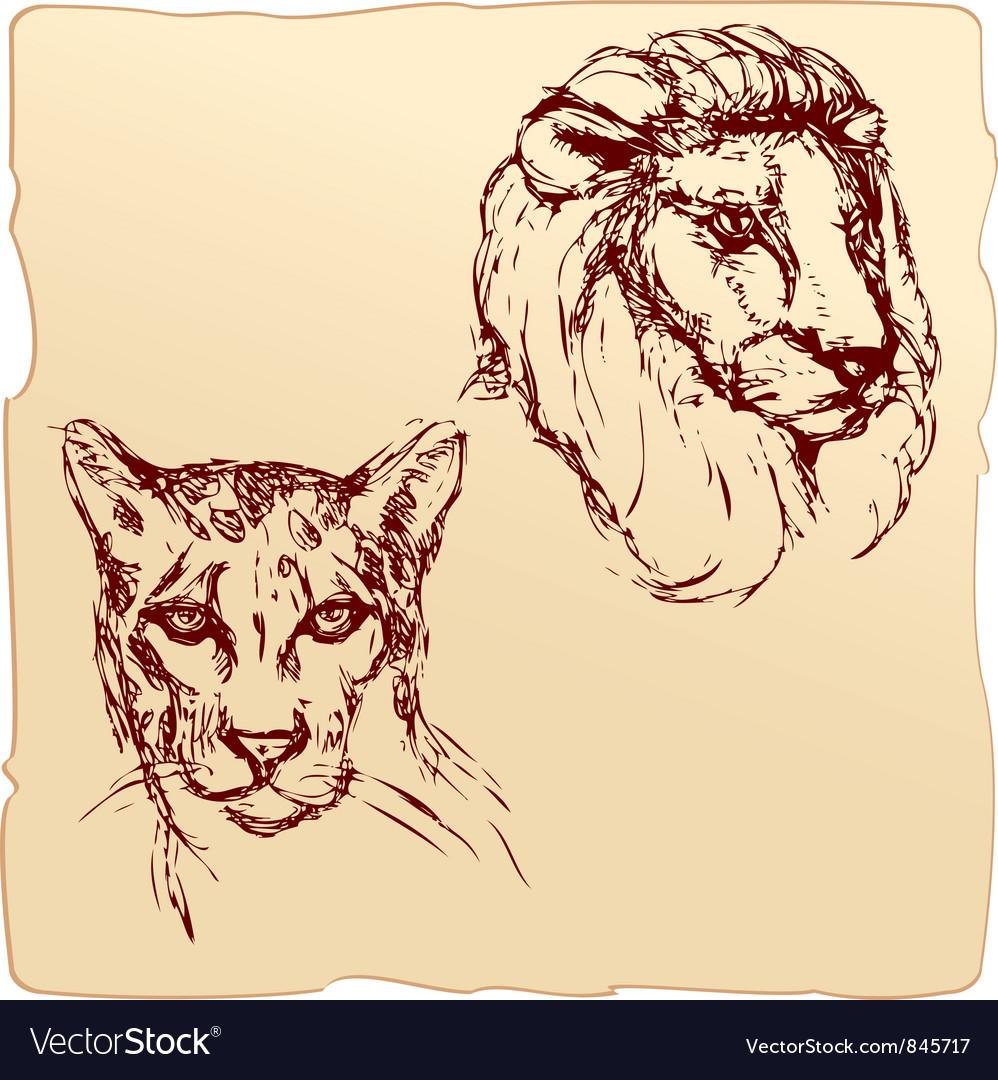 2be56c36553 Lion