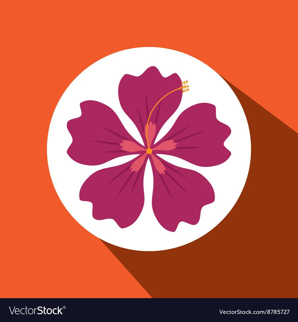Hawaiian Flower Design Royalty Free Vector Image