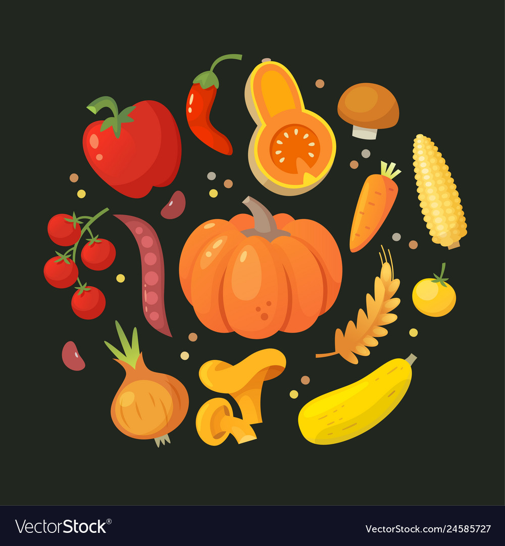 Red orange and yellow vegetables in circle