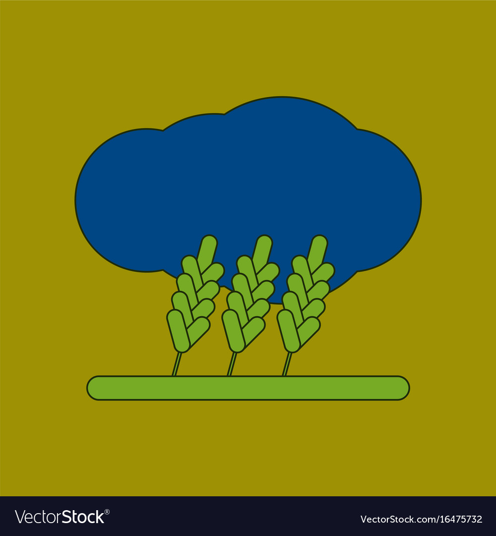 Flat icon on background wheat cloud vector image