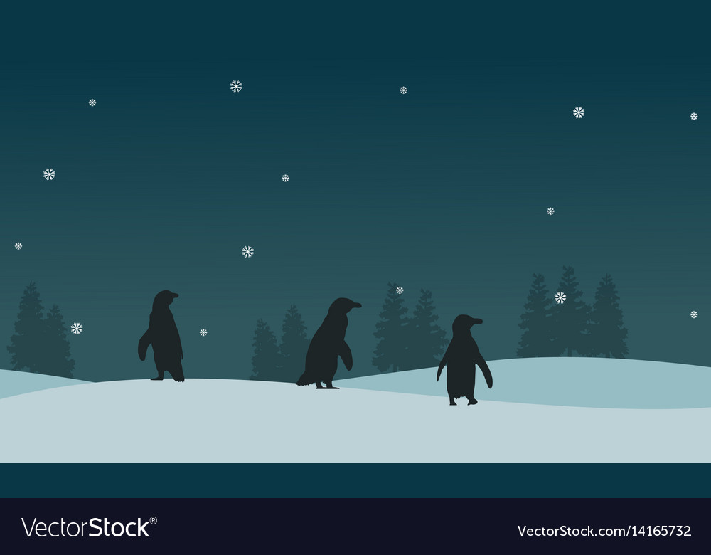 Silhouette of penguin on ice scenery vector image
