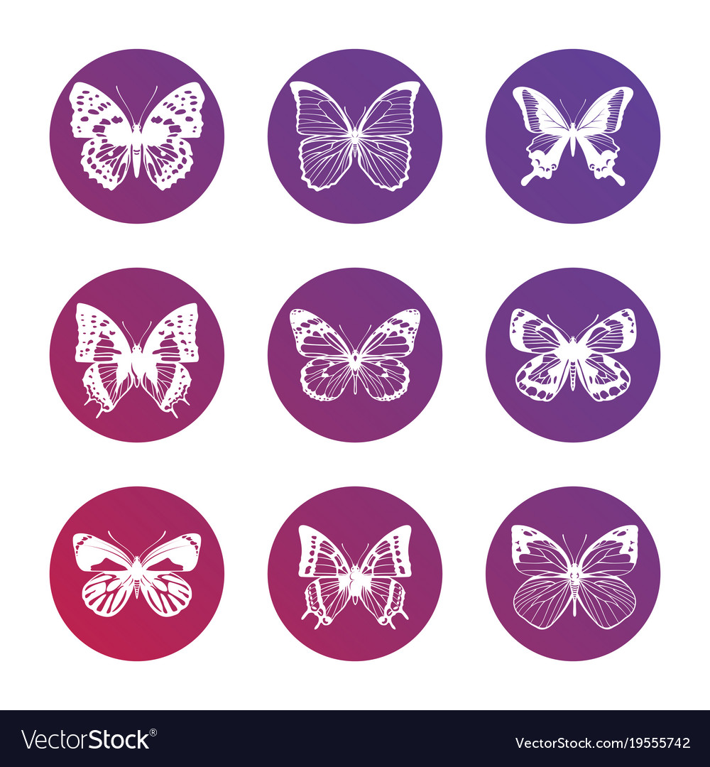 Bright icons with white butterflies silhouettes