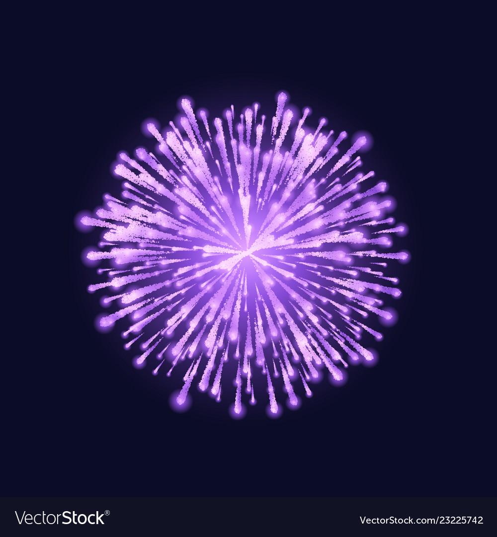 Firework isolated beautiful purple firework on