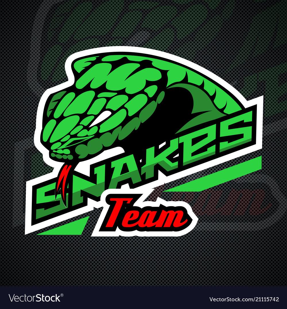 Snake logo template for team sport theme vector image