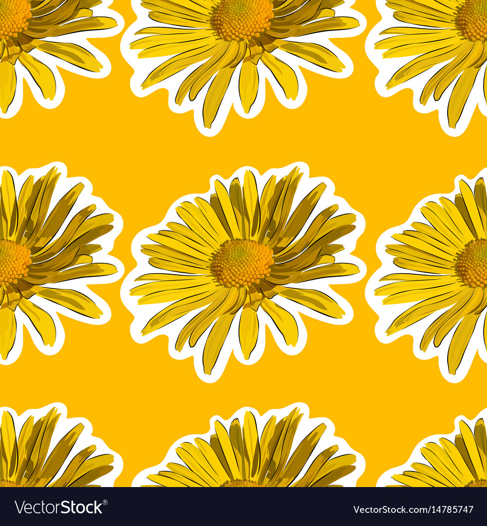 Chamomile flower seamless background