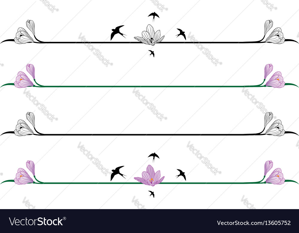 Set of borders with crocuses