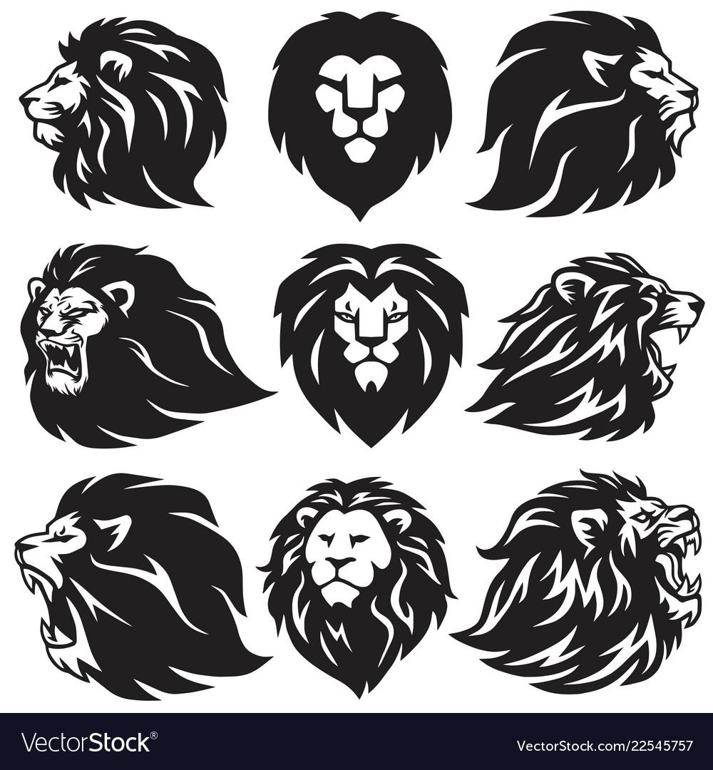 Lion logo set collection premium design