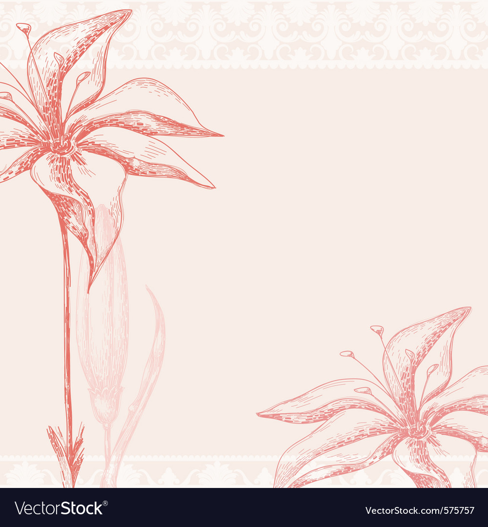 Ornate floral background vector image