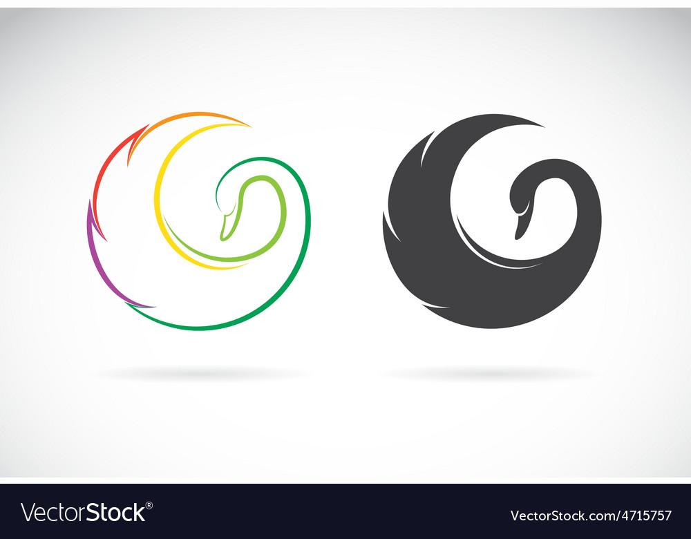 Swan design vector image