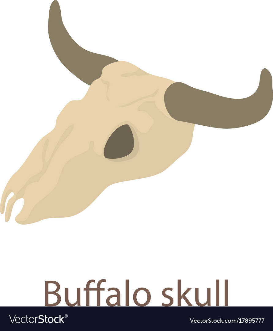 Buffalo skull icon isometric 3d style