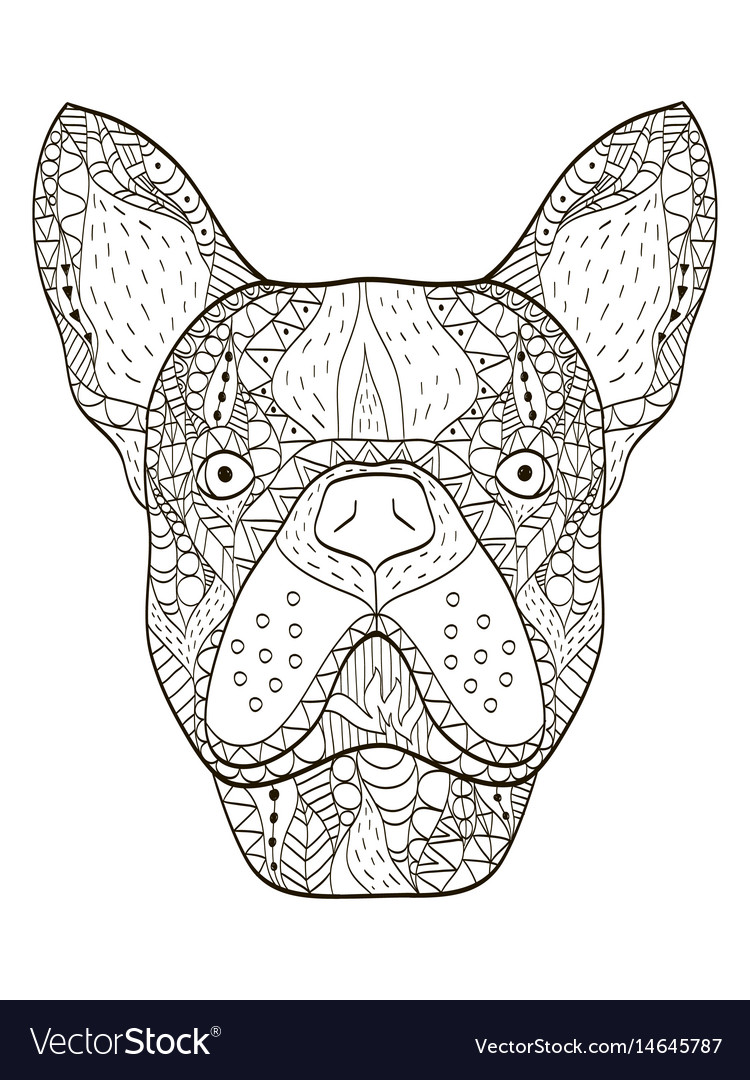Bulldog head coloring book for adults