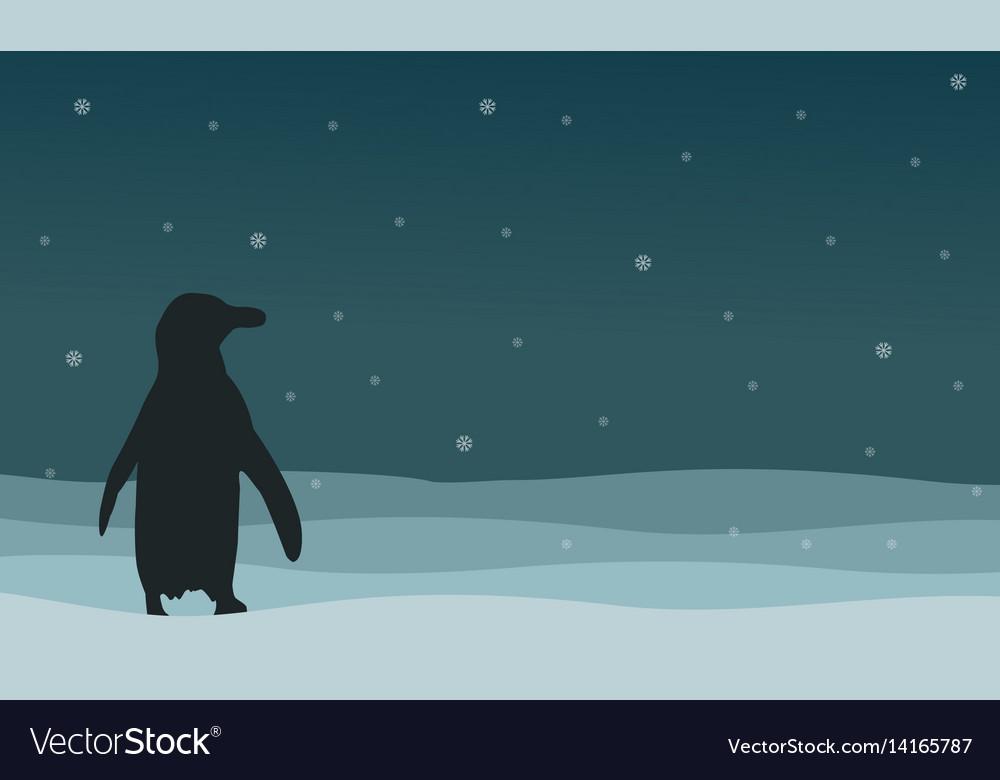 Silhouette of penguin on hill landscape