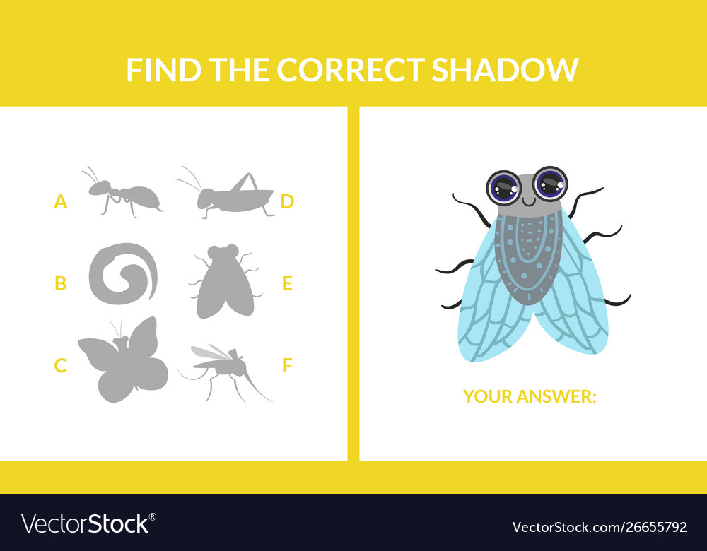 Matching game with cute flying insects find the