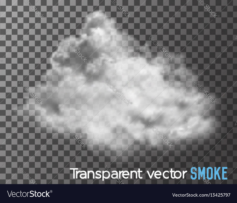 smoke on transparent background royalty free vector image